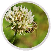 Abeille Round Beach Towel