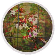 Abelia Coming Through Round Beach Towel