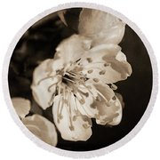 Round Beach Towel featuring the photograph Abiding Elegance by Linda Lees