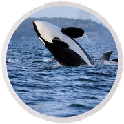 Absolutely Free - Whale Art Round Beach Towel