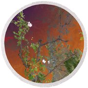 Abstract Flowers Of Light Series #13 Round Beach Towel