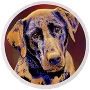 Abstract Golden Labrador Retriever Painting Round Beach Towel