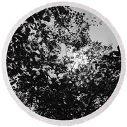 Round Beach Towel featuring the photograph Abstract Leaves Sun Sky by Chriss Pagani