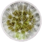 Abstract Nature Dandelion Floral Maro White And Yellow A1 Round Beach Towel