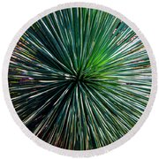 Abstract Nature Desert Cactus Photo 207 Blue Green Round Beach Towel