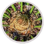 Abstract Nature Tropical Fern 2096 Round Beach Towel