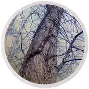 Abstract Tree Trunk Round Beach Towel