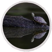 Round Beach Towel featuring the photograph Abstract Turtle by Douglas Stucky