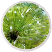 Abstrct Grass Round Beach Towel
