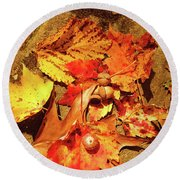 Acorns Fall Maple Leaf Round Beach Towel by Meta Gatschenberger