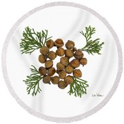 Acorns With Cedar Round Beach Towel