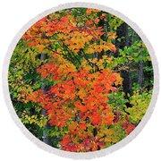 Adirondack Crimson Round Beach Towel by Diane E Berry