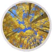Round Beach Towel featuring the photograph Admiring Aspens - Colorado - Autumn by Jason Politte