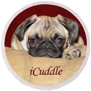 Adorable Icuddle Pug Puppy Round Beach Towel