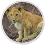 Adorable Lion Cub Round Beach Towel