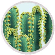 Adorned Cactus Round Beach Towel