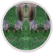 Advancing Army Of Squirrels Round Beach Towel