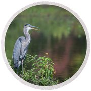 Advice From A Great Blue Heron Round Beach Towel