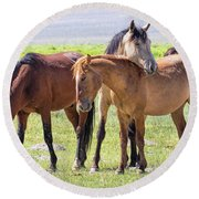 Affectionate Mustangs Round Beach Towel