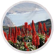 African Aloe And False Bay Round Beach Towel