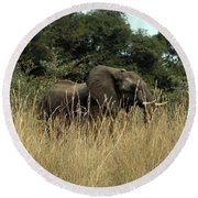 African Elephant In Tall Grass Round Beach Towel