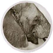 African Elephant Profile  Duotoned Round Beach Towel by Liz Leyden