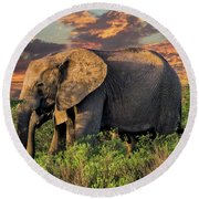 African Elephants At Sunset Round Beach Towel