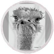 African Ostrich Sketch Round Beach Towel