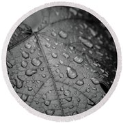 After The Rain #2 Round Beach Towel