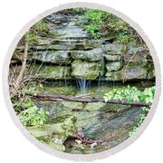 Round Beach Towel featuring the photograph After The Rain by Cricket Hackmann