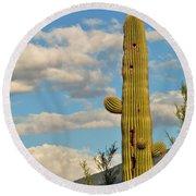 Afternoon Cactus Round Beach Towel
