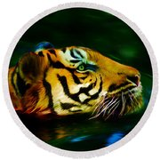 Afternoon Swim - Tiger Round Beach Towel