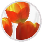 Afternoon Tulips Round Beach Towel
