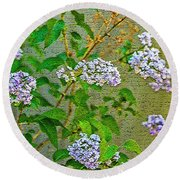 Against The Fence Round Beach Towel by Nancy Marie Ricketts