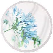 Round Beach Towel featuring the photograph Agapanthus 1 by Cindy Garber Iverson