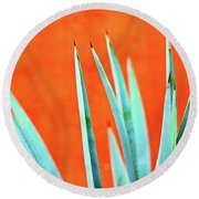 Agave 2 Round Beach Towel