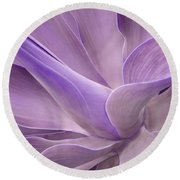 Agave Attenuata Abstract 2 Round Beach Towel