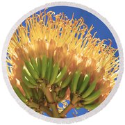 Agave Bloom Round Beach Towel