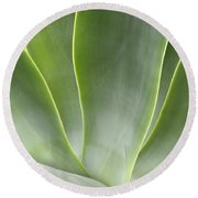 Agave Leaves Round Beach Towel