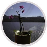 Round Beach Towel featuring the photograph Alaska Flower Pot by Madeline Ellis