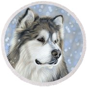 Round Beach Towel featuring the mixed media Alaskan Malamute by Donna Mulley