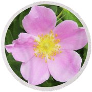 Alberta Rose Round Beach Towel