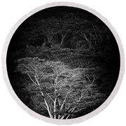 Albezia Tree Round Beach Towel