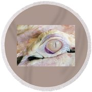 Albino Alligator Round Beach Towel by Lamarre Labadie