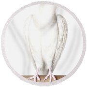 Albino Crow Round Beach Towel