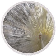 Pure White Peacock Round Beach Towel