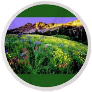Albion Meadows Round Beach Towel