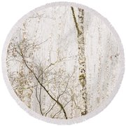 Alders In The Fog Round Beach Towel