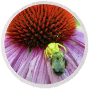 Round Beach Towel featuring the photograph Alien Spider Having Lunch by Randy Rosenberger