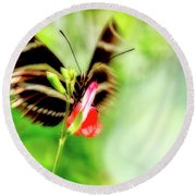 All A-flutter Round Beach Towel